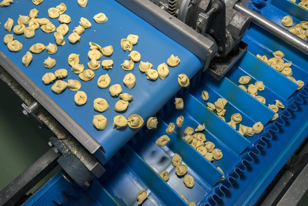 Esbelt-Conveyor-Belt-for-pasta-production