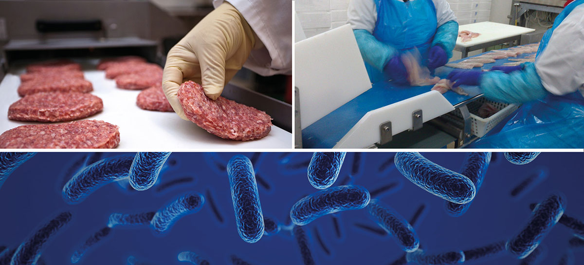 Esbelt-Conveyor-belts-Anti-microbial-Food