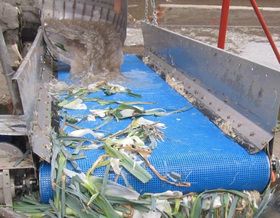 Esbelt Washflow mesh belt for fruits & vegetable processing.