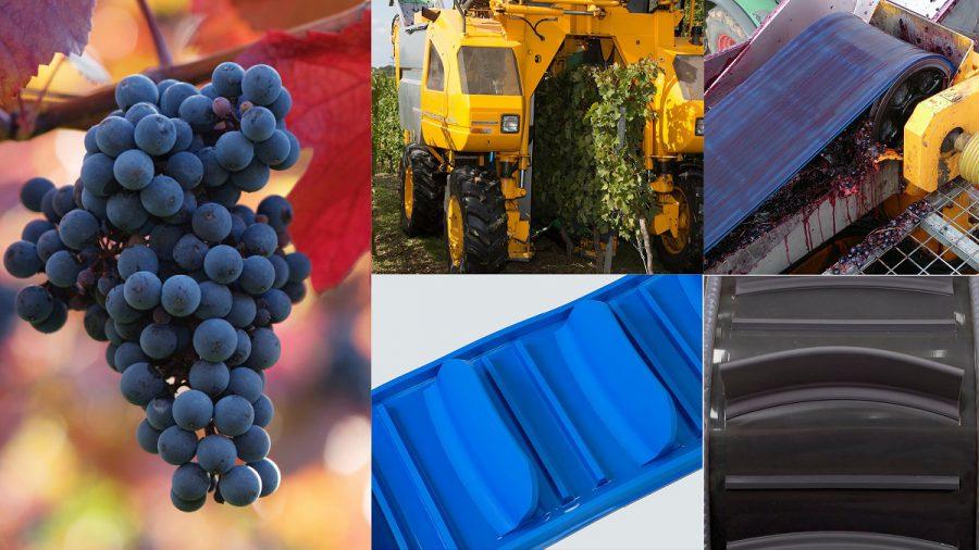 Grape-Harvesting-Belts
