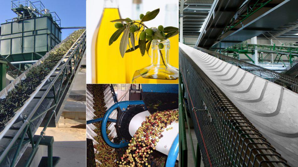 Agro Conveyor Belt - Olive Oil