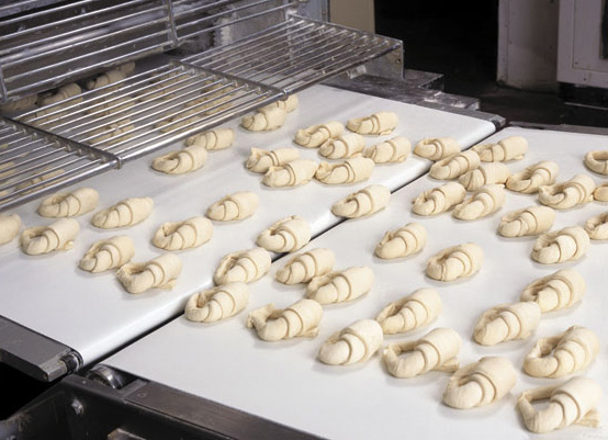Esbelt PU Conveyor Belt - Croissants