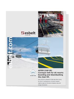 Esbelt-Aster-22AF-Ski