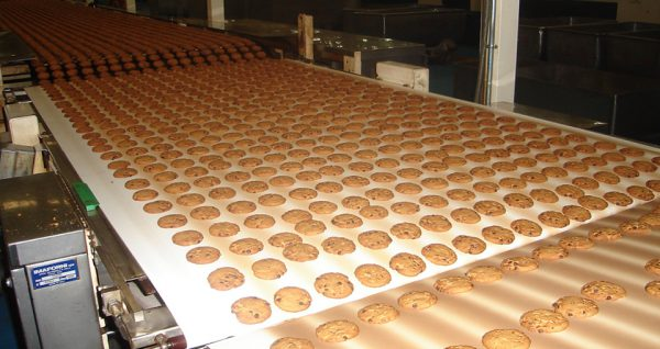 Esbelt Conveyor Belts - VERNA - Biscuits