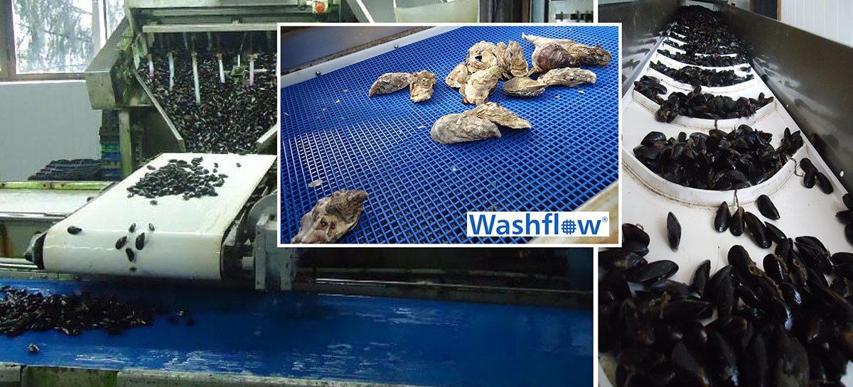 Esbelt conveyor belts for Fish & Seefood