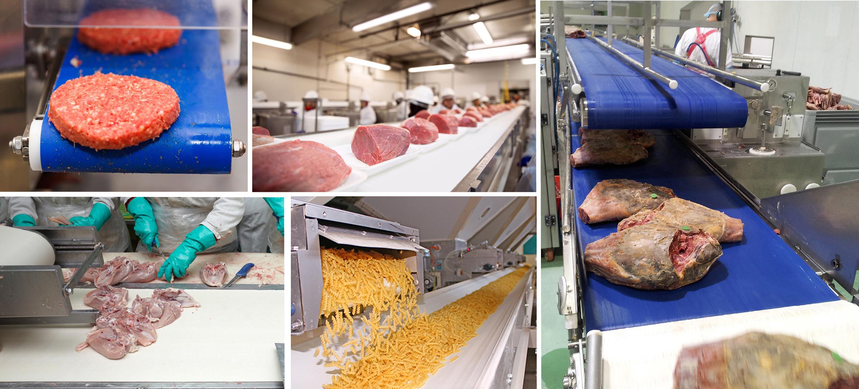 Bandas transportadoras para Carne y Avicola